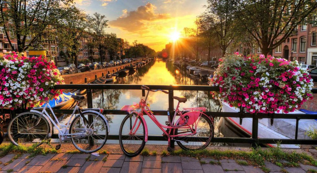 Amsterdam bicycle walking tour for team building